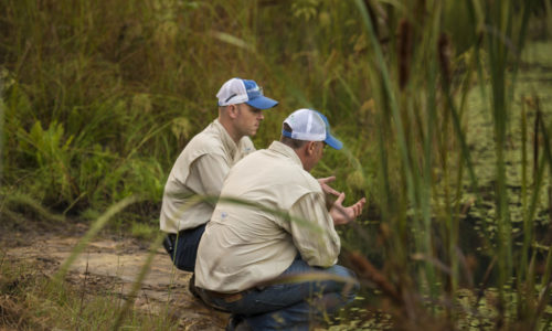 Aquatic Weed Wizards owners discuss the status of invasive vegetation on a rocky bank