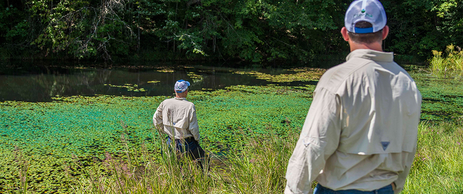 Technicians monitor a pond that has been sprayed for invasive species from the bank