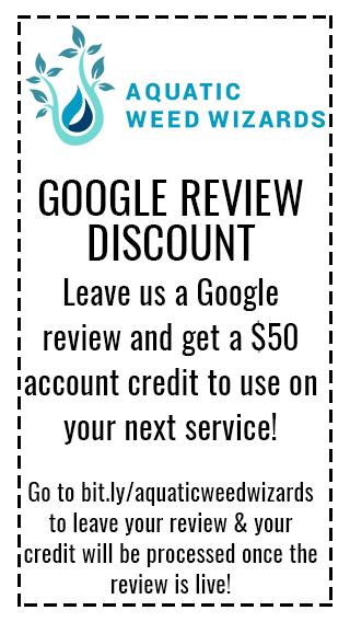 Google Review Coupon
